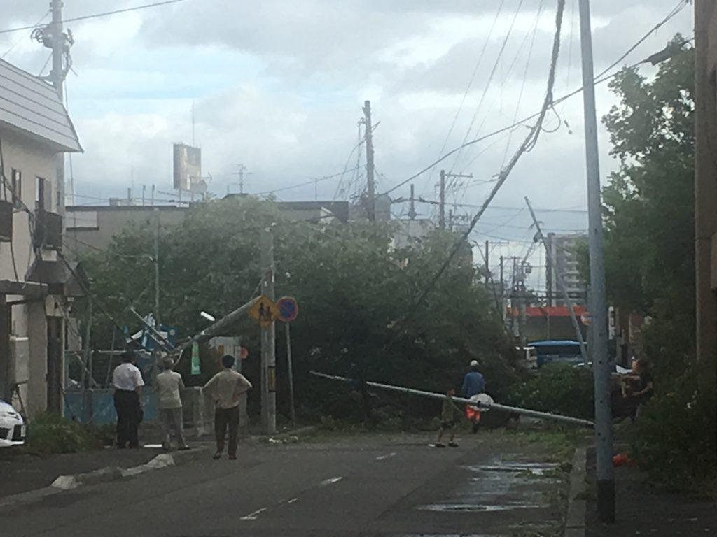 台風21号倒木
